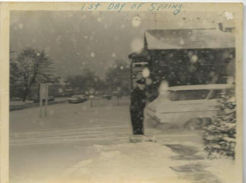 Brown1st day of spring1965